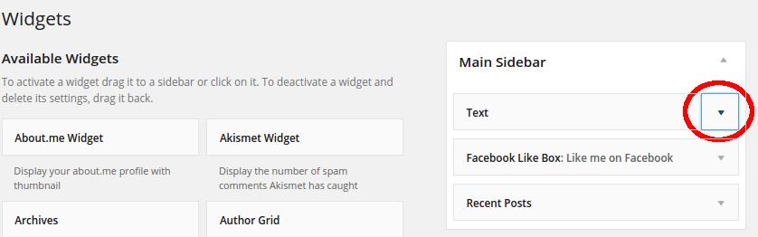 click to edit the text widget