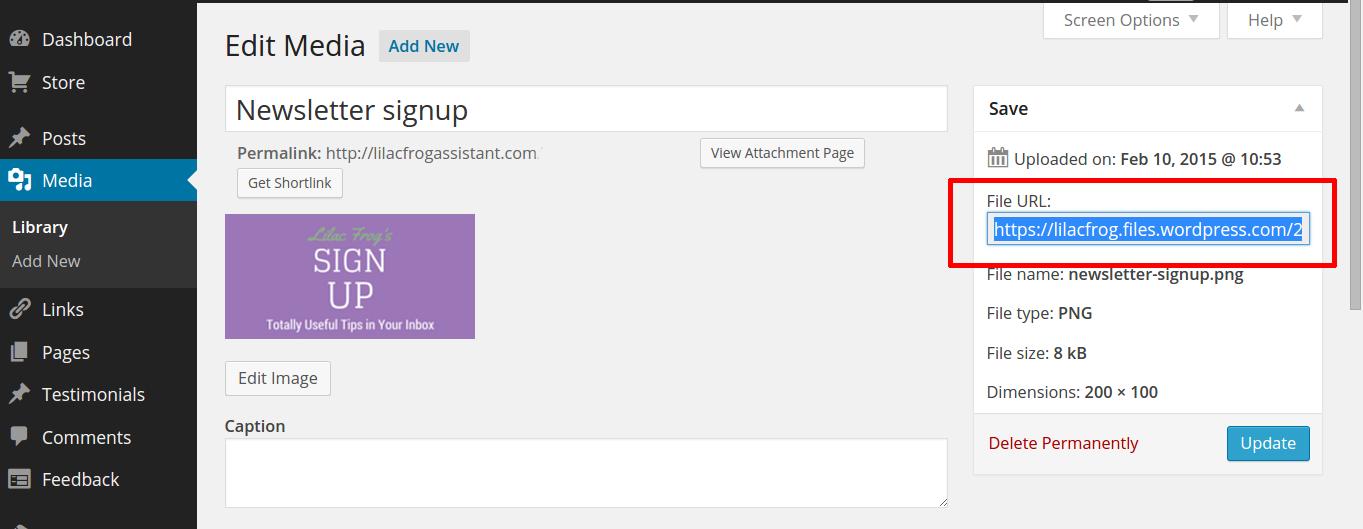Copy media file URL